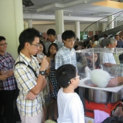 Crowd around the candy floss machine